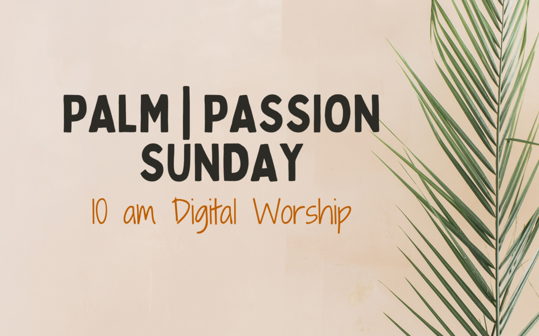 """March 28 Worship – """"Brave Enough?"""" (Palm 